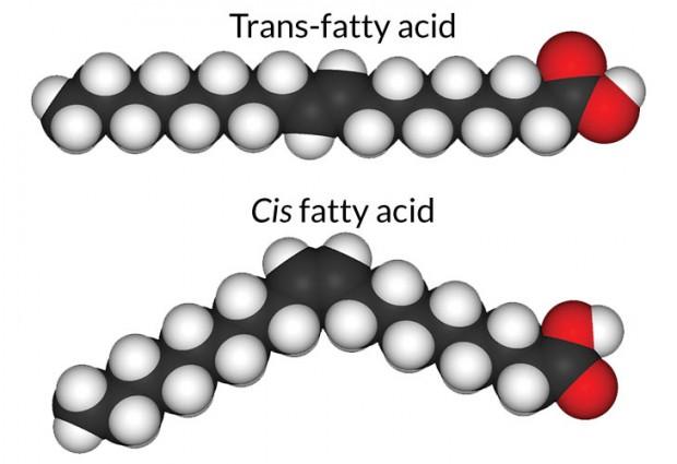 bo_trans-fat_free-620x425